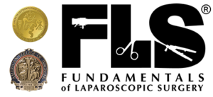 FLS_logo_web