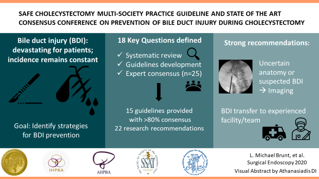 Safe Cholecystectomy Multi Society Practice Guideline And State Of The Art Consensus Conference On Prevention Of Bile Duct Injury During Cholecystectomy A Sages Publication